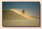 Desert Egypte